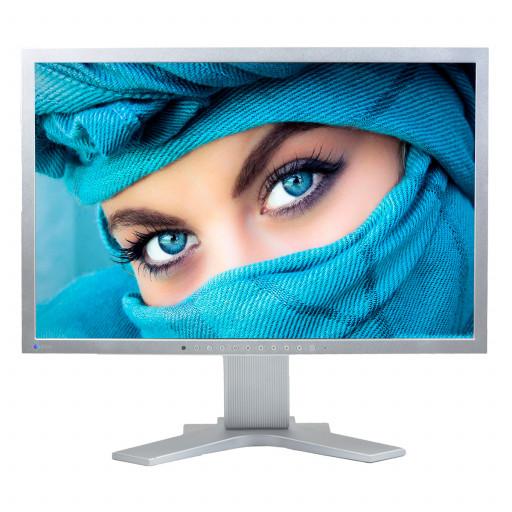 EIZO FlexScan S2202W, 22 inch LCD, 1680 x 1050, 16:10, negru - argintiu - argintiu
