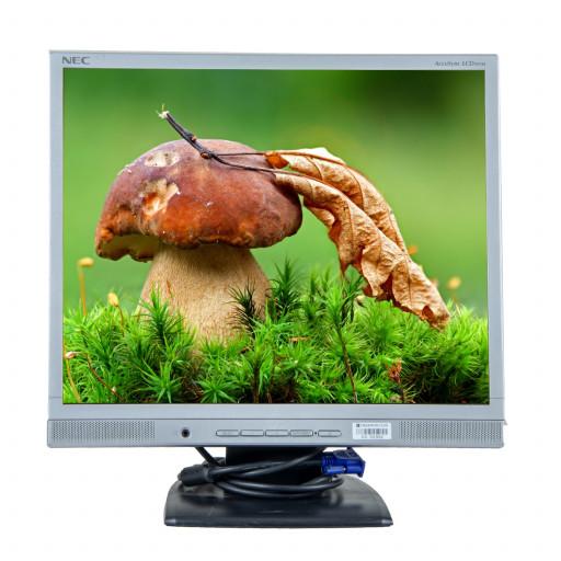 NEC 93VM, 19 inch LCD, 1280 x 1024, negru - argintiu