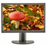 Lenovo L2240P, 22 inch LCD, front