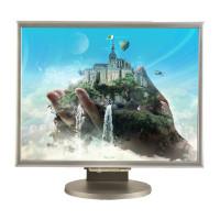 NEC MultiSync 2170NX, 21 inch LCD, 1600 x 1200, negru - argintiu
